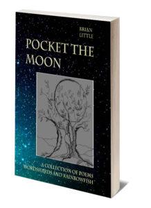 Pocket the moon.